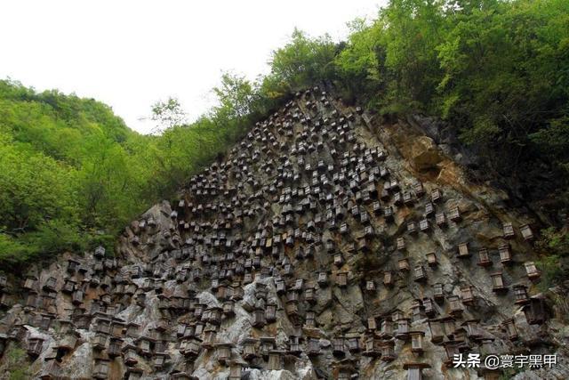 千年迷題-懸棺葬是如何放置在那么高的懸崖峭壁之上的?